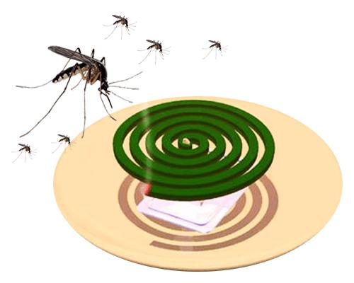 nhang muỗi chống muỗi