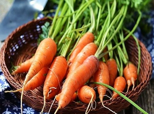 cách chế biến món ăn từ cà rốt
