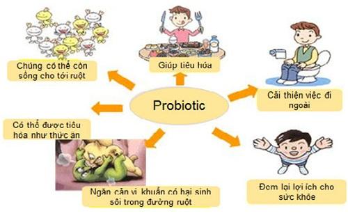 loi-ich-probiotic