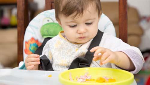 Ăn dặm BLW là một phương pháp mà bé tự quyết định món ăn dặm theo ý muốn