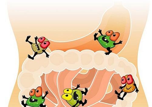 Bổ sung lợi khuẩn tốt cho người hay bị rối loạn tiêu hóa