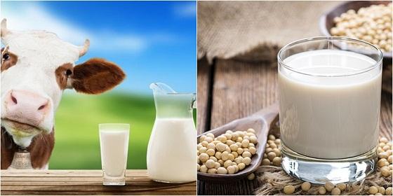 cach-chua-tri-chung-bat-dung-nap-lactose