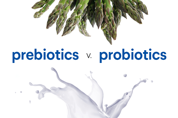 cach-bo-sung-probiotic