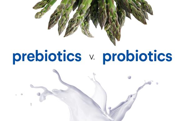 cach-bo-sung-probiotic
